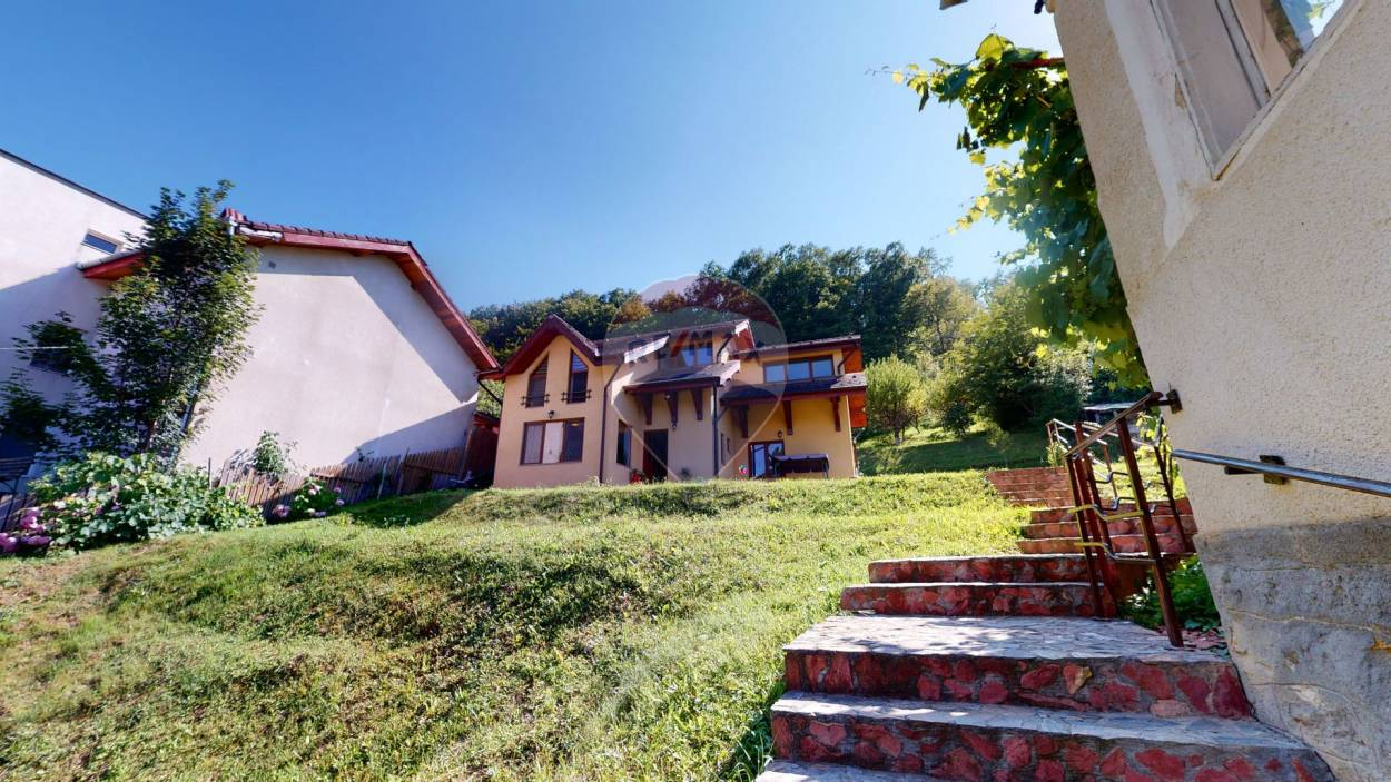 House + 1869sqm land with orchard +1400 sqm forest for sale in Geoagiu-Bai