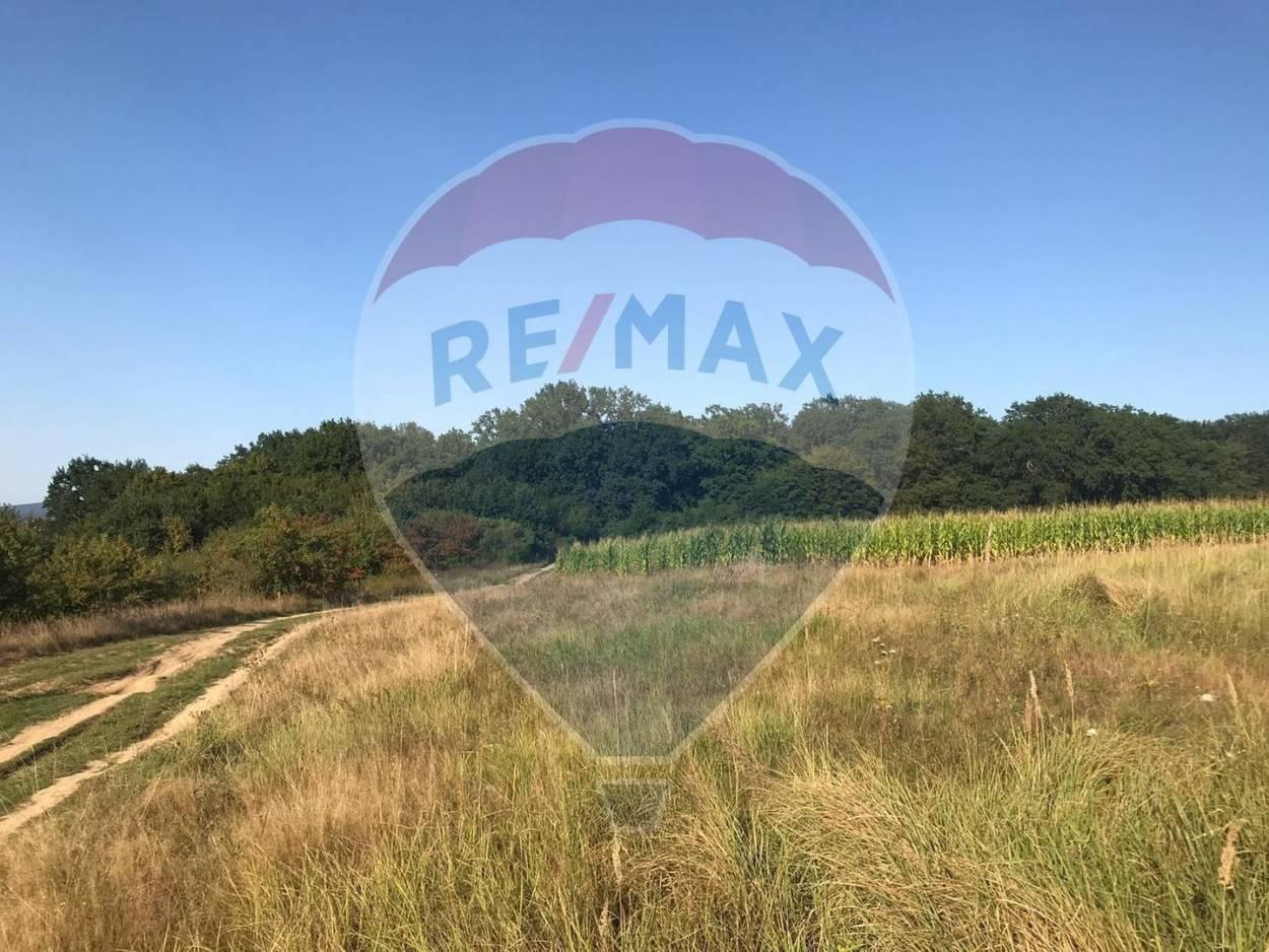 Land for sale located on Sibiului Street, cisnadie